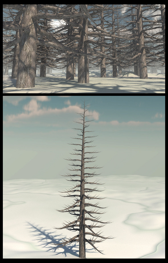 Dead Pine Tree V2 - 3DOcean Item for Sale