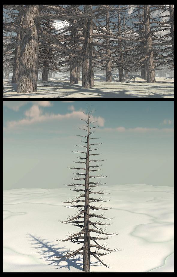 3DOcean Dead Pine Tree V2 9795374