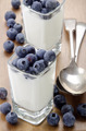 organic yogurt and blueberries in a square shot glass - PhotoDune Item for Sale