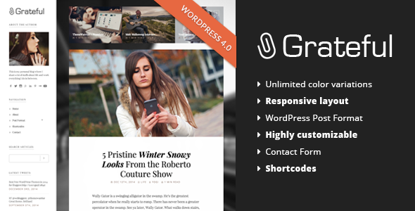 ThemeForest Grateful Personal Blog WordPress Theme 9749246