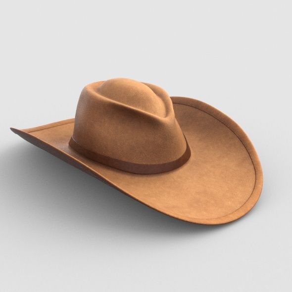 3DOcean CowboyHat 9800449