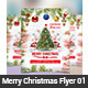 Merry Christmas Flyer 01 - GraphicRiver Item for Sale