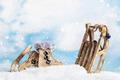 Christmas toys sleds and skates - PhotoDune Item for Sale