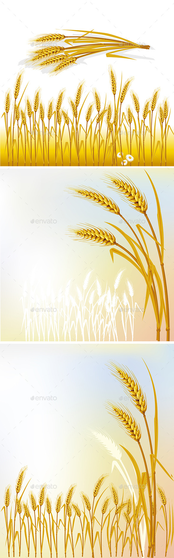 GraphicRiver Set of Backgrounds with Wheat 9801956