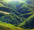 Green hills - PhotoDune Item for Sale