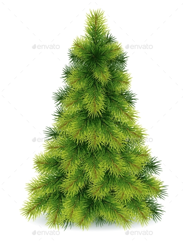 GraphicRiver Pine Tree 9805034
