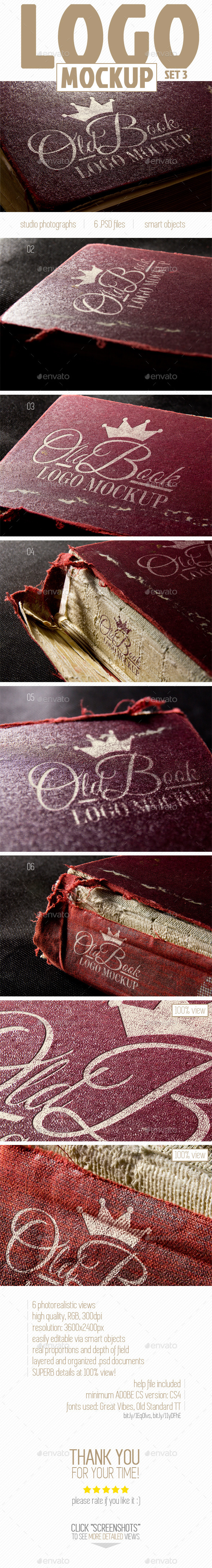GraphicRiver Photorealistic Old Book Logo Mock-Up set 3 9805109