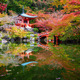 Daigoji Temple in Autumn, Kyoto, Japan - PhotoDune Item for Sale