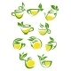 Tea Symbols - GraphicRiver Item for Sale