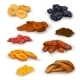 Dried Fruit Icons Set - GraphicRiver Item for Sale