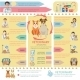 Veterinary Infographics - GraphicRiver Item for Sale