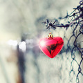 Red heart, barbed wire and metal gauze. - PhotoDune Item for Sale