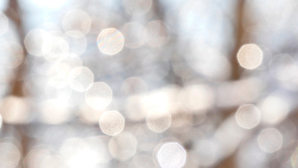 Winter White Bokeh Circles