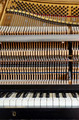 inside the piano: string, keys and hammers - PhotoDune Item for Sale
