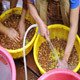 Farmers Washing Collected Coffee Beans 1 - VideoHive Item for Sale
