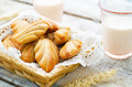 Wholegrain Madeleine on a light woody background - PhotoDune Item for Sale