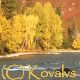 River And Autumn Forest - VideoHive Item for Sale