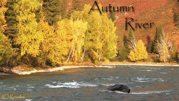 River And Autumn Forest