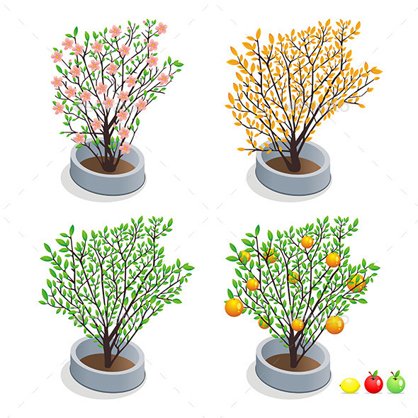 GraphicRiver Trees in Pots 9843923