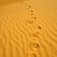 Footprints on the sand - PhotoDune Item for Sale