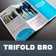 Trifold Nextlane Business Brochure - GraphicRiver Item for Sale