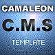 CAMALEON, Full Flash C.M.S Template - ActiveDen Item for Sale