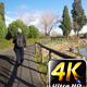 Man Walking in Nature 2 - VideoHive Item for Sale