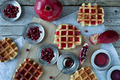 Waffle With Pomegranate Sorbet - PhotoDune Item for Sale