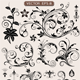 Floral Ornament Collection - GraphicRiver Item for Sale