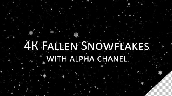 4K Infinity Fallen Snowflakes