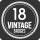 Vintage Retro Badges Vectors - GraphicRiver Item for Sale