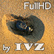 Scarab Beetle - VideoHive Item for Sale