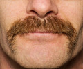 Movember Mustache - PhotoDune Item for Sale