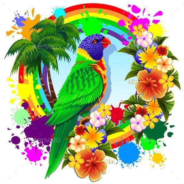 GraphicRiver Rainbow Lorikeet Parrot 9865209