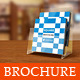 Elegant Square Brochure Template - GraphicRiver Item for Sale