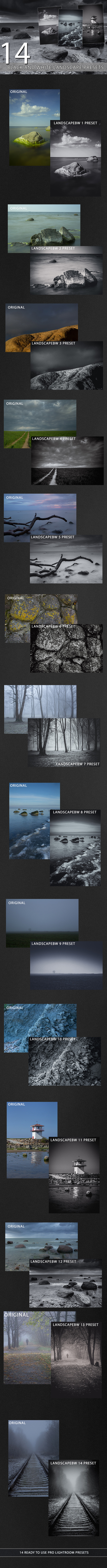 GraphicRiver 14 Black and White Landscape Presets 9895073