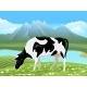 Cow and Rural Meadow Landscape - GraphicRiver Item for Sale