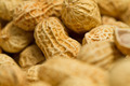 Peanut Abstract Background - PhotoDune Item for Sale