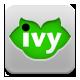 IvyStudio