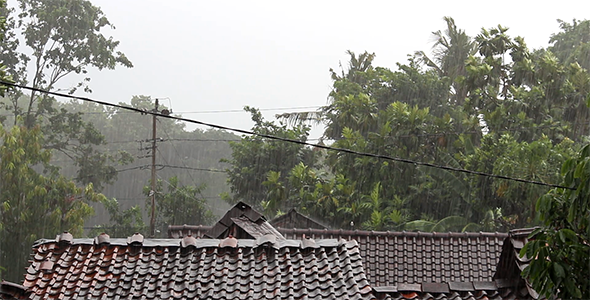 Heavy Rain on the Roof 4