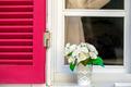 Flowers in Pot near the Window - PhotoDune Item for Sale