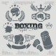 Boxing Labels and Icons Set - GraphicRiver Item for Sale