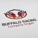 Buffalo Racing Logo - GraphicRiver Item for Sale