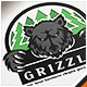 Grizzly Bear Forest Logo - GraphicRiver Item for Sale