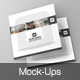 Square Tri-Fold Brochure Mock-Ups - GraphicRiver Item for Sale