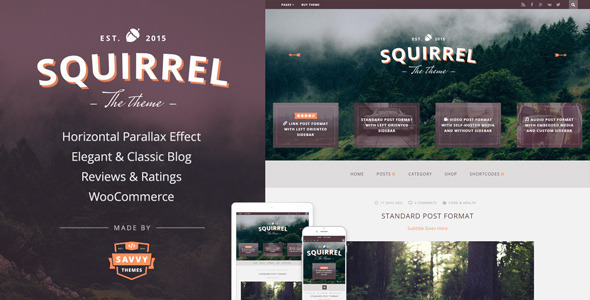 Squirrel A Responsive WordPress Blog Theme