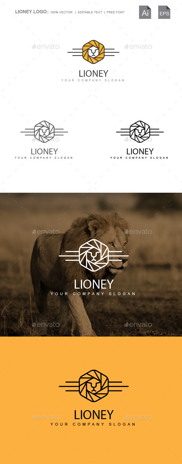 GraphicRiver Lioney 9936832