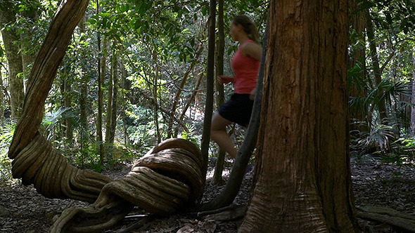 VideoHive Running In The Rainforest 9942629
