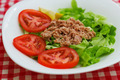 Tuna Fish Meat Over Green Salad - PhotoDune Item for Sale