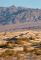 Sand Dunes Death Valley Desert Mesquite Flat Grapevine Mountains - PhotoDune Item for Sale